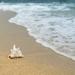 Microplastics and Clothing