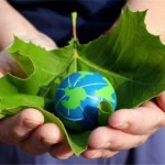 A Greener Clean with Green Earth