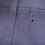 Cleaning & Storing Clothes to Prevent Insect Damage